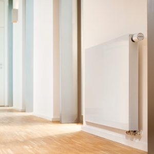 buderus baseboard heater